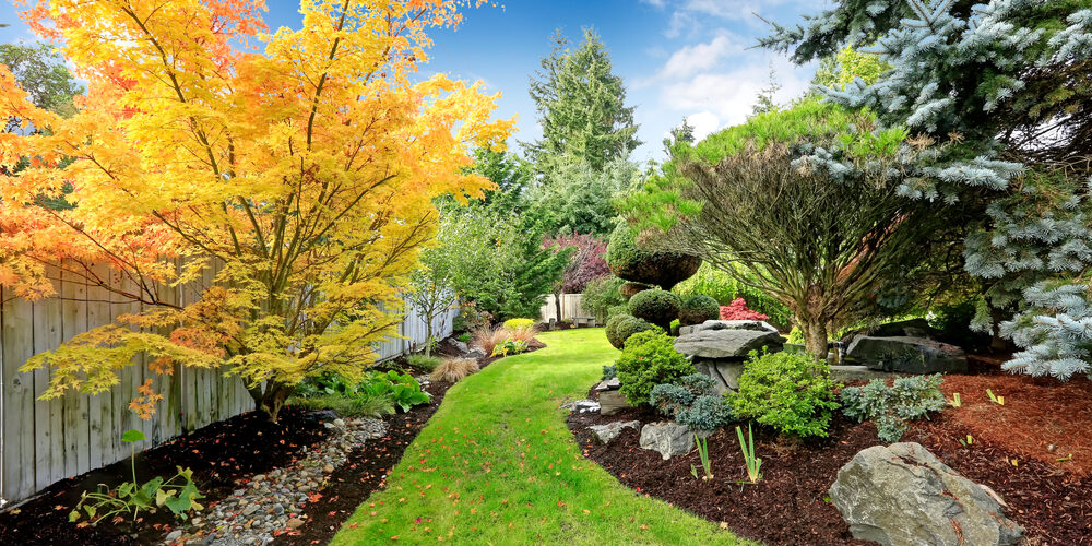 Beautiful,Backyard,Landscape,Design.,View,Of,Colorful,Trees,And,Decorative